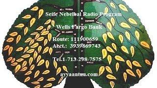 Seife Nebelbal Radio, June 2014