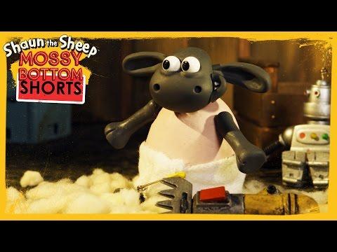 Babysitting Timmy - Shaun the Sheep [Full Episode]