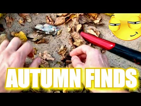FABULOUS AUTUMN FINDS, LEAVES HIDE LOST ITEMS! We found them & we'll show You what leaves are hiding
