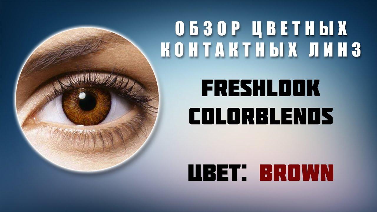 Обзор контактных линз FreshLook Colorblends Brown
