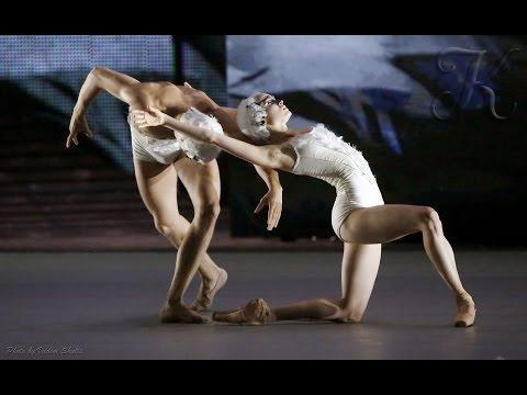 Большой балет. Инна Билаш и Никита Четвериков. Умирающий лебедь