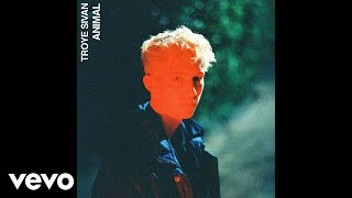 Download Lagu Troye Sivan - Animal Mp3
