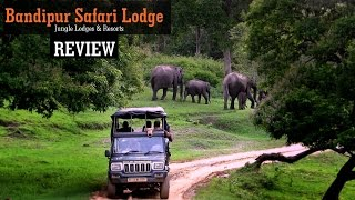 Bandipur India  city photos : Bandipur Safari Lodge - REVIEW Jungle Lodges & Resorts I India Travel