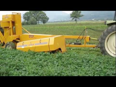 Pixall - Contact us at: (+31) (0) 165 315 536 or info@sweere.net The Pixall BH100 allows you to mechanically harvest fresh market beans. This one-row pulled machine u...