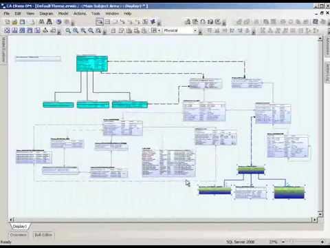 Erwin Data Modeler Themes Overview Erwin Inc