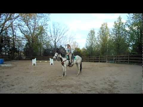 Lakota's First day of Trick Riding Training