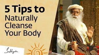 Video 5 Tips to Naturally Cleanse Your Body at Home – Sadhguru MP3, 3GP, MP4, WEBM, AVI, FLV Juli 2019