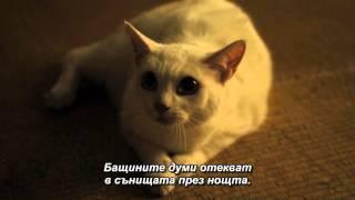 Samurai Cat Song