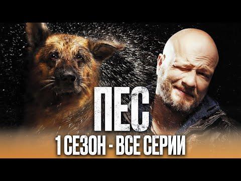 Сериал ПЕС - ПОЛНЫЙ 1 сезон - ВСЕ СЕРИИ ПОДРЯД (1 - 20)   Сериалы ICTV