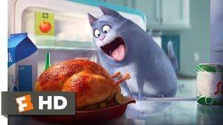 The Secret Life of Pets - The Owners Leave Scene (1/10) | Movieclips full download video download mp3 download music download