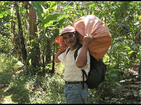 [Video-Stanford's Guatemala Service Learning Trip, 2008-2]