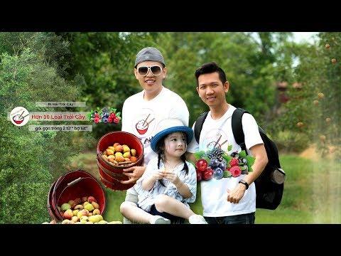 Đi Hái Nhiều Loại Trái Cây | Vườn Trái Cây Kỳ Lạ - Thời lượng: 35 phút.