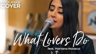 Video What Lovers Do - Maroon 5 (Boyce Avenue ft. Mariana Nolasco acoustic cover) on Spotify & Apple MP3, 3GP, MP4, WEBM, AVI, FLV April 2018