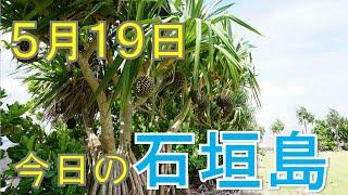5月19日の石垣島天気