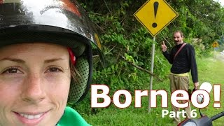 We caught wind of something amazing in the jungle of central Sabah and decided to see if we could find it! (Spoiler: We did!)More about this video ► http://kydeanderic.com/Borneo-Part6Support our videos at Patreon ► http://patreon.com/kydeandericSubscribe ► http://youtube.com/kydeanderic?sub_confirmation=1Facebook ► http://facebook.com/kydeandericTwitter .....► http://twitter.com/kydeandericReddit ......► http://reddit.com/r/KydeandEricPatreon is the best way to support our videos, but you can also make contributions here ► http://www.kydeanderic.com/index.php#ContributionsBorneo Part 5 . ► https://youtu.be/mbH8my8WQNgBorneo Part 7 . ► https://youtu.be/9u7Eu2AeDZ8Borneo Playlist ► https://www.youtube.com/playlist?list=PLrvJJu2Pt1jhTsNJ0JGeaxAPBu8Fpy0qkVideos we talked about in this episode:Adventures in Japan.....................  ►https://www.youtube.com/playlist?list=PLrvJJu2Pt1jjFWWM3FpS4aV4GGNmFbexQChristmas in The Philippines.......... ►https://youtu.be/2fQxQg1qw4AKyde at Trump's Inauguration........ ► https://youtu.be/zRUDLnFXHDoEric Surprises Kyde in America...... ► https://youtu.be/pySMFAqR3kcYou might also like these other videos we have made:Snow Festival in Hokkaido, Japan...► https://youtu.be/y9EvlV2E_hcTokyo Disneyland..............................► https://youtu.be/BKePs_kHCzwJapanese Mascot Festival...............► https://youtu.be/UH3F8ETlalwVietnam.............................................► https://goo.gl/Zd9hhFMyanmar...........................................► https://goo.gl/ELAhh1Taiwan...............................................► https://goo.gl/T6F3gCThe Philippines.................................► https://goo.gl/1JiimzMedia Shoutouts: bill wurtz's alphabet shuffle ............ ► https://youtu.be/g02WKrWjUgAbill wurtz's history of Japan............. ► https://youtu.be/Mh5LY4Mz15oTheme Song ► http://youtu.be/M-7KEWXz__EFilmed with a Sony DSC-HX90V