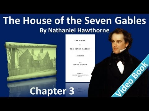 Chapter 03 - The House of the Seven Gables by Nathaniel Hawthorne - The First Customer