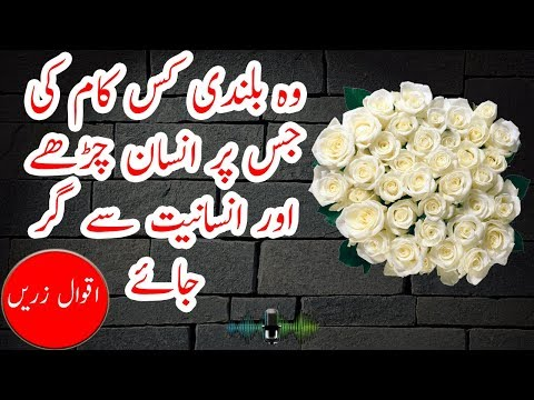 Leadership quotes - Friendship Quotes  Love Quotes  Life Quotes  Motivational Quotes  All in Urdu & Hindi With Audio