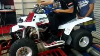 6. Yamaha Banshee 50+HP!!