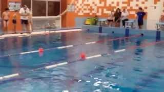 Соревнования по прикладному плаванию 2015 (видео №2)