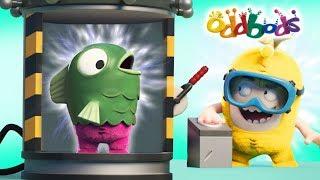 Video MERMAID EXPERIMENT | Oddbods Show Full Episodes | Funny Cartoons MP3, 3GP, MP4, WEBM, AVI, FLV Januari 2019
