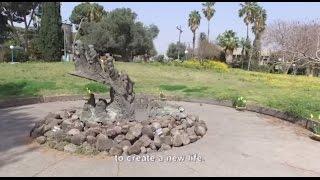 נצר סרני(1 סרטונים)