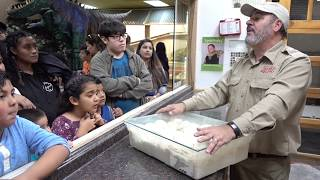 Behind the Scenes Zoo Experience with Snake Unboxing by Prehistoric Pets TV