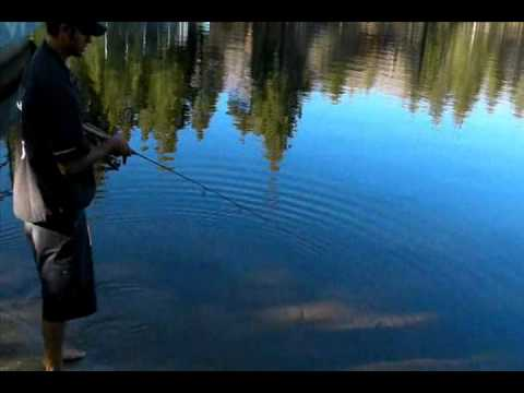 How To Fish A Lip RipperZ Z Spoon for Trout and Crappie Fishing