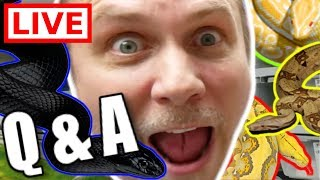 REPTILES and SNAKES Q&A LIVE🔴 by Brian Barczyk
