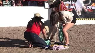 El Tepetate - Jaripeos y rodeos