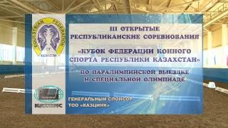 Сегодня в поселке Винном Глубоковского района прошел третий открытый кубок Федерации конного спорта РК по паралимпийской выездке и специальной олимпиаде