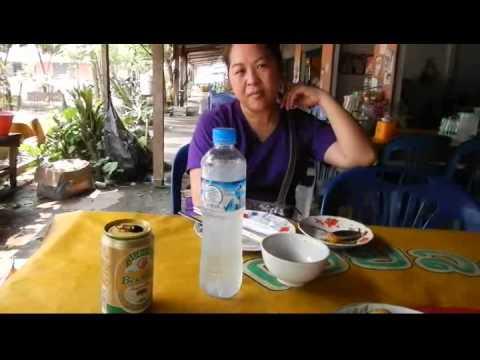 Mus ua si teb chaws Nplog, from Luang Namtha to Vientiane, Laos