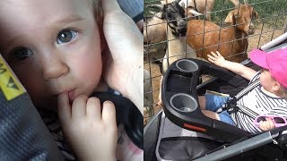 Baby Layla Goes to the Petting Zoo!