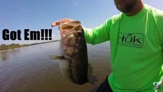 Video Bass Fishing Lake Palestine With Ronnie Kelley MP3, 3GP, MP4, WEBM, AVI, FLV Mei 2019