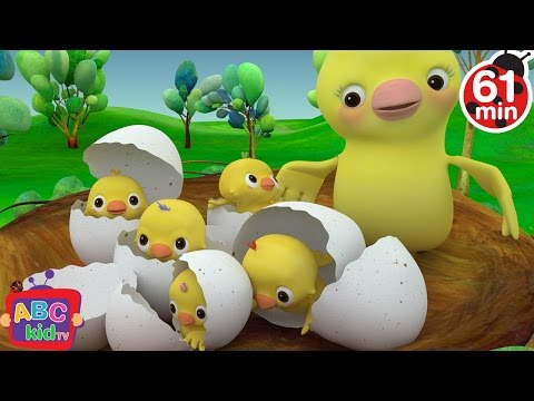 Five Little Birds | +More Nursery Rhymes & Kids Songs - Cocomelon (ABCkidTV)