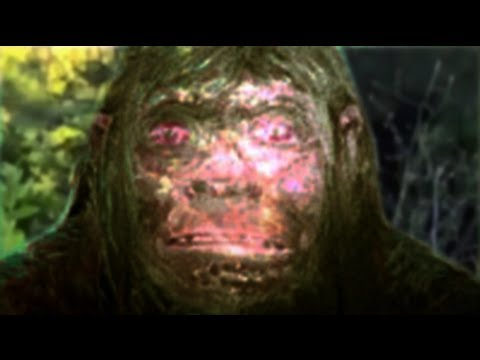 Neanderthal - Do archaic humans still walk the earth? The Almas, Almasty, Man of the Forest, Wildman, Yeti, Russian Bigfoot... what ever you want to call him, he's out the...