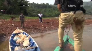 Video Tembak-tembakan Saat Penggerebekan Sabung Ayam di Pinggir Laut - Part 2 - 86 MP3, 3GP, MP4, WEBM, AVI, FLV Juni 2018