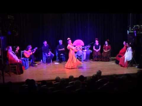 Spectacle de Flamenco La Conciencia