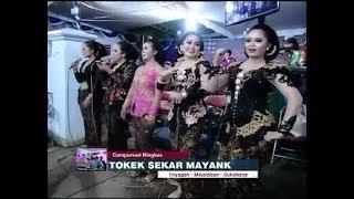 Video LIVE - Campursari Sekarmayank/sekar mayang (Call:+628122598859) MP3, 3GP, MP4, WEBM, AVI, FLV Maret 2018