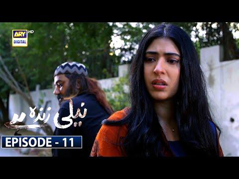 Neeli Zinda Hai Episode 11 [Subtitle Eng] | 29th July 2021 - ARY Digital Drama