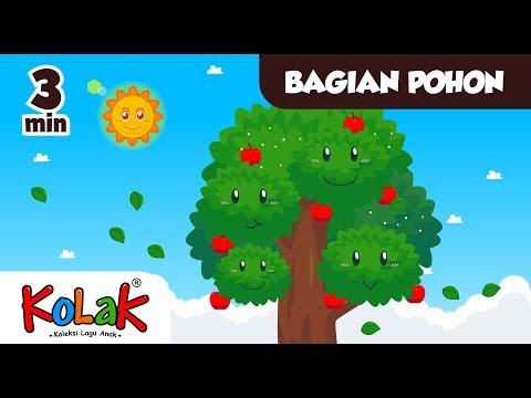 Lagu Anak Indonesia   Bagian Pohon   TK dan PAUD