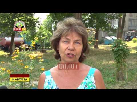 В Донецке реализуется программа «Асфальт в каждый двор»