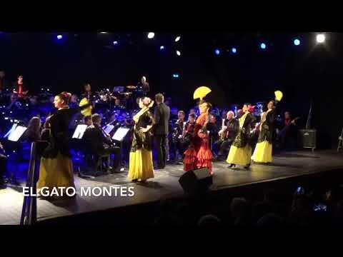 Cours de danse Flamenco et Sévillanes à ISADORA Auterive