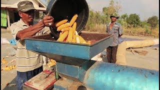 Farming with Conservation Agriculture in Indonesia