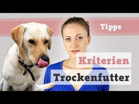Hundefutter Hund Ernährung | Kriterien Trockenfutte ...