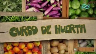 Huerta 5 - La siembra II.