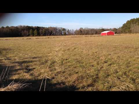 32.76 acres Rhodesdale, MD