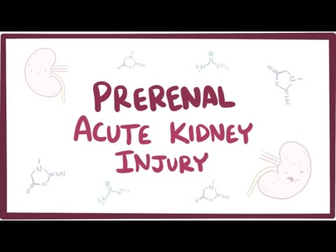 Prerenal acute kidney injury (acute renal failure) - causes, symptoms & pathology