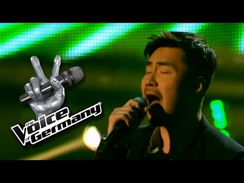Bad Day - Daniel Powter | Jong David Lee Cover | The Voice of Germany 2015 | Audition