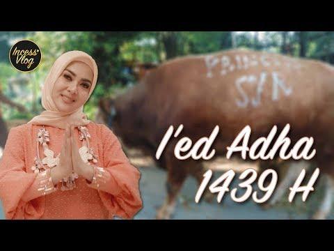 INCESS NOSTALGIA DI HARI RAYA IED ADHA #INCESSVLOG