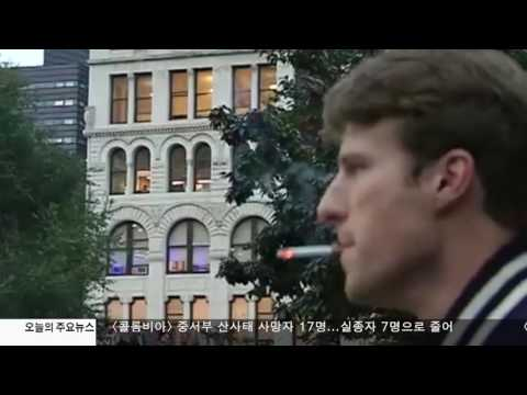 담뱃값 전국 최고 뉴욕시...또 인상 4.20.17 KBS America News